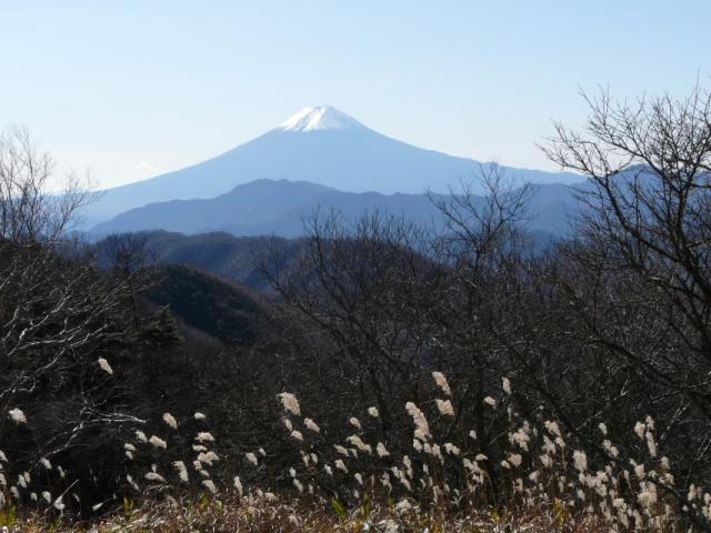 091115小金沢連陵1114_富士山1.jpg